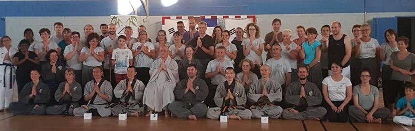 Les Maîtres Coréens en France